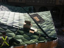 Keine leichte Aufgabe - die grüne Fledermaus