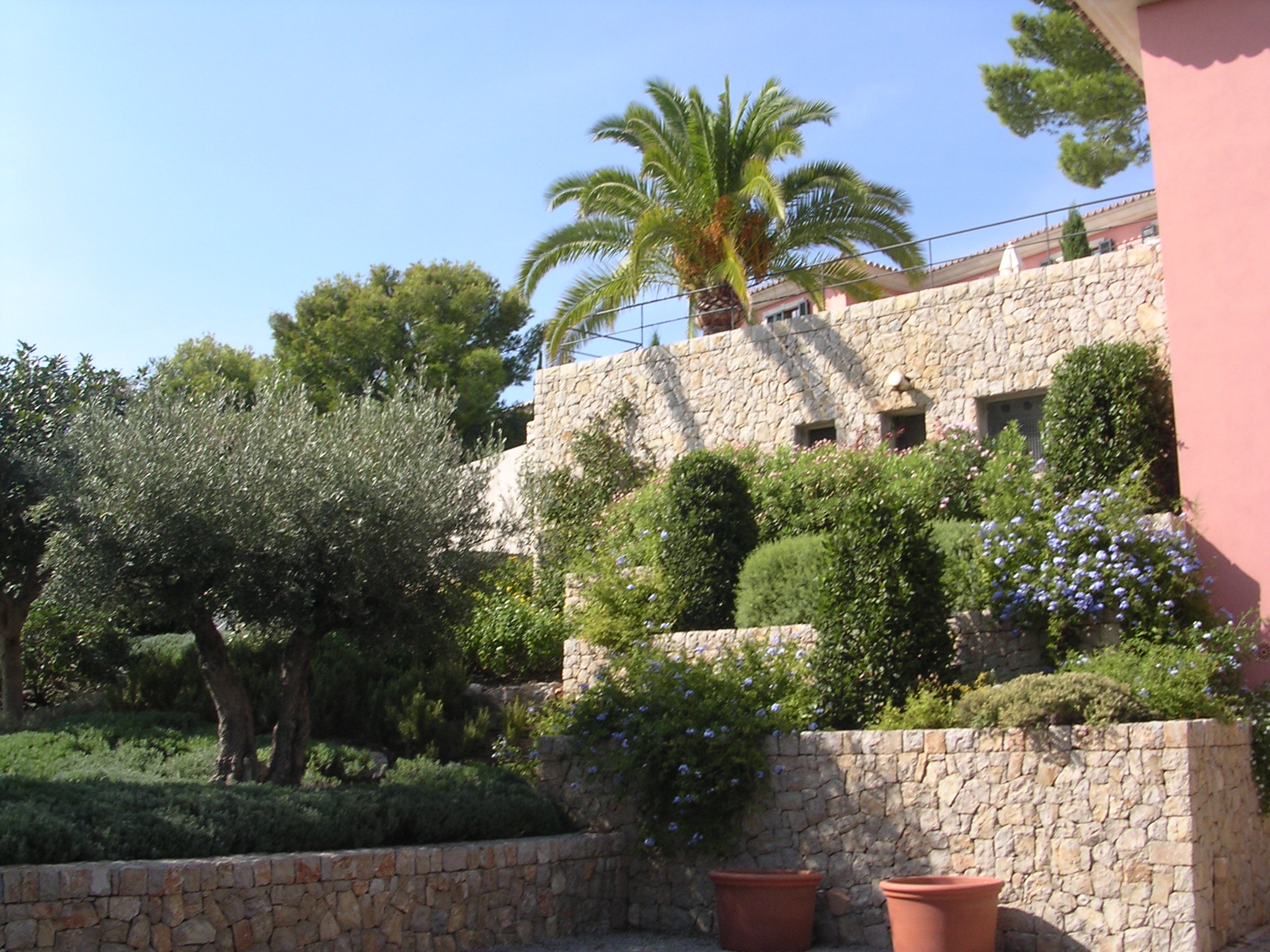 Mediterraner Garten muenchenarchitektur