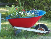 BILD:   Aus Garten mach Wohnung