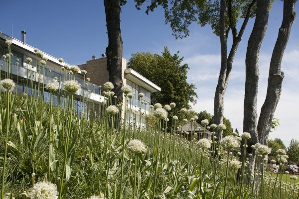 gr sergarten am haus s muenchenarchitektur. Black Bedroom Furniture Sets. Home Design Ideas
