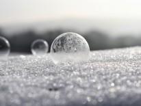 BILD:   Bodenpreis eingefroren