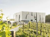 BILD:   Alte Kellereien, neue Architektur