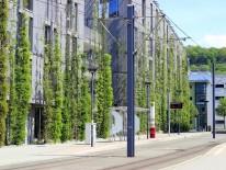 BILD:   Grüne Vielfalt statt grauer Beton