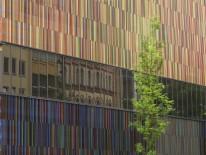 BILD:   10 Jahre Museum Brandhorst